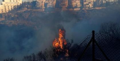 يديعوت: أكثر من 6 آلاف حريق اندلع قرب المستوطنات في الضفة